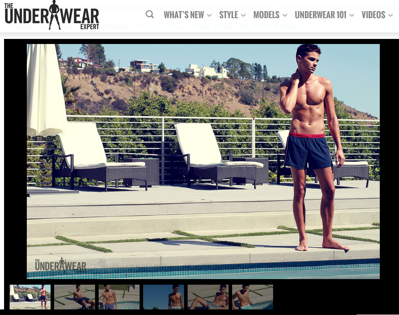 697422e2eb The Underwear Expert featured some of our favorite swim shorts from our  Waves Classic Collection. Eric Ramirez states,